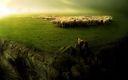 Moutons et Loup fond ecran 1600x1200