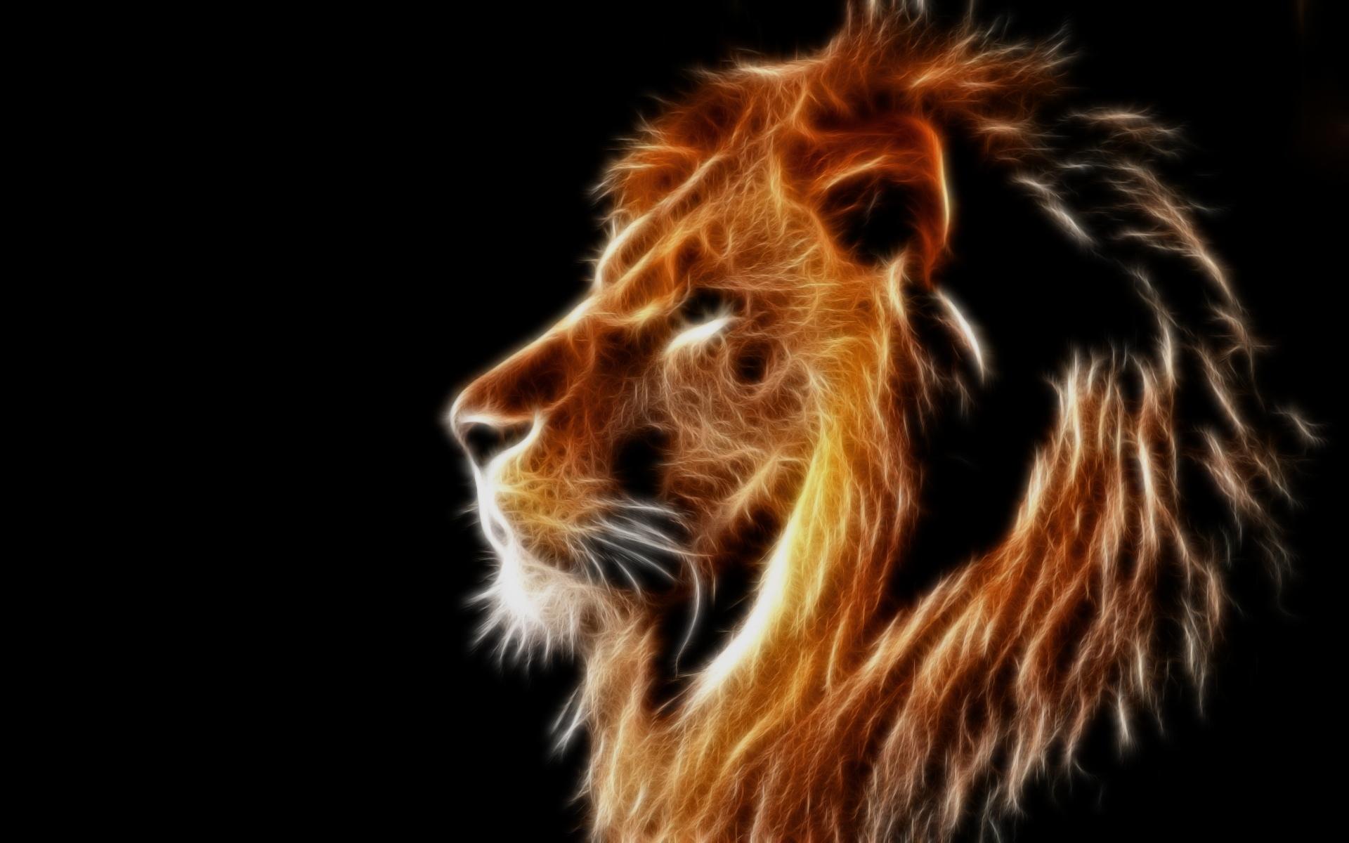 fond d'ecran 3d lion