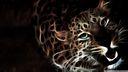 Leopard 3D fond ecran