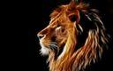 Tete de Lion 3D