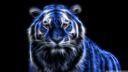 Tigre 3D 1920x1080