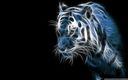 Tigre Fractalius bleu