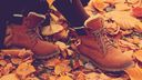 Chaussures dans les feuilles mortes