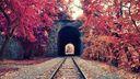 Tunnel de train dans la forêt