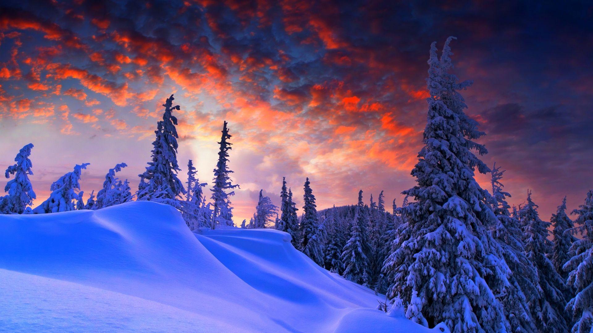 Coucher_de_soleil_en_hiver.jpg