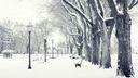 Parc public sous la neige