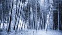 Un eternel hiver - fond ecran