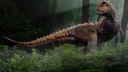 Carnotaurus Dinosaure 3D