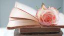 Rose sur des livres